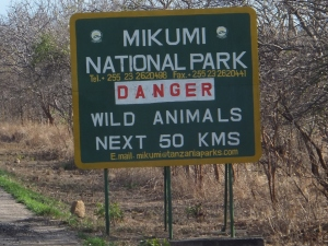 Wild Animals Next 50 kms